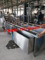 蔬菜清洗机 大型喷淋式果蔬清洗厂家价格