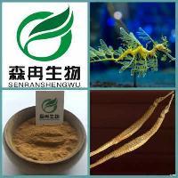 优质原料提取 海龙提取物 现货供应 10:1 补肾壮阳