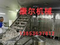 供应康尔牌炸鱼生产线 大型油炸机流水线