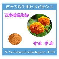 万寿菊提取物 玉米黄质20%  叶黄素5%