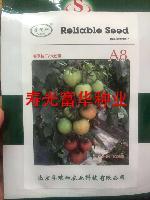 北京孚瑞加春季抗TY粉果番茄种子-A8