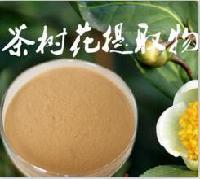 供应茶树花提取物 茶树花粉  批发价格