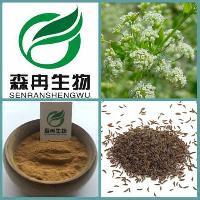 香芹籽提取物 芹菜籽提取物 10:1  降血压