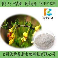金雀异黄素  染料木苷 染料木提取物