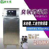 武汉臭氧发生器,武汉100克氧气源臭氧发生器
