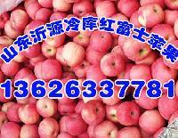 山东红富士苹果批发基地价格报价
