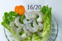 广州蓝虾海产品有限公司招商