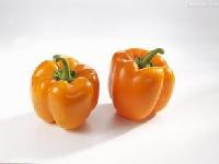 天然辣椒橙色素生产厂家