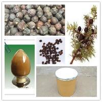 杜松粉作用 杜松子粉价格 杜松子提取物厂家包邮 杜松子浸膏粉
