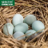 绿壳散养乌鸡蛋20枚装