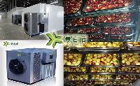 空气能红枣烘干机带保温红枣烘干房出售