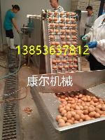 山东康尔鸡蛋全自动剥壳机厂家直销节能型