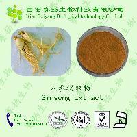 厂家直销破冰价格 人参提取物/ 人参皂苷80% Ginseng Extract8