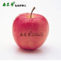 陕西苹果洛川红富士