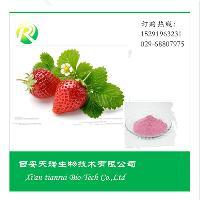 草莓冻干粉 纯天然 无添加