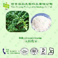 藤茶提取物   二氢杨梅素98%  厂家现货供应