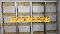 全自动小型豆芽机生产设备省工、低耗能、无污染、无噪音