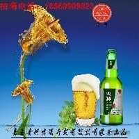 ktv 纯生啤酒24支瓶装啤酒