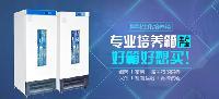 150L生化培养箱BJPX-100现货