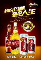 英豪玛咖啤酒全国各省市诚招加盟