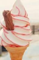 冰淇淋粘合剂成分分析/飞秒检测