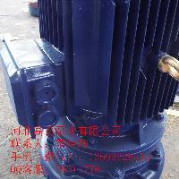ISG80-160I立式离心泵 河北管道泵厂家