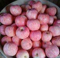 江西南昌红富士苹果批发价格 江西苹果批发价格