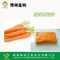 胡萝卜提取物 10:1 天然优质胡萝卜粉