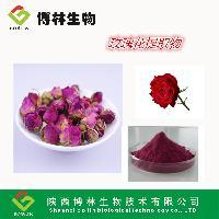 厂家直销 玫瑰花提取物 玫瑰花粉