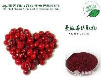 供应蔓越橘(蔓越莓)提取物原花青素5%