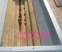 MQX-1200型桔子清洗,毛刷清洗脱皮机