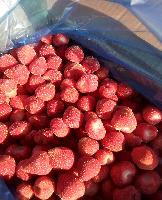 速冻草莓 甜查理 天然爽口10kg 产量巨大 出口品质 欧盟标准