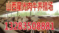 2016养牛好还是养羊好?