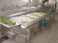 新型HB-760核桃仁脱皮清洗机 胡萝卜清洗机