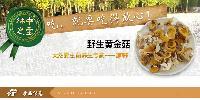 黄金菇 鸡油菌干货 500g 包邮