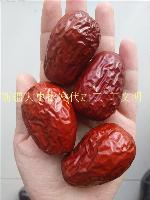 新疆红枣供应商价格行情