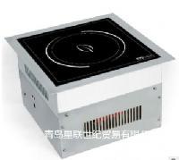 Induc喜达客 嵌入式电磁炉IND-30PH-3500