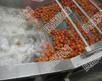 【蔬菜清洗机】最新价格 老字号