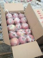 陕西冷库红富士苹果