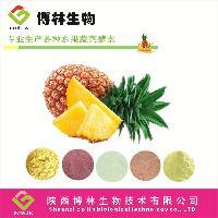 菠萝酵素粉  菠萝粉  刺梨粉