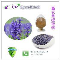 薰衣草提取物 Lavender Extract