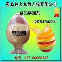 果胶酶价格