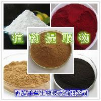 平贝母提取物 厂家生产 纯天然水溶平贝母粉