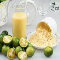 海南双椰水果粉厂家 供应纯天然金桔原粉 免费取样