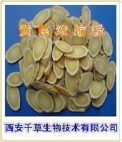 黄芪提取物 厂家生产黄芪粉