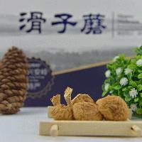 滑子菇 批发东北特产礼盒装滑子菇 禾源森林
