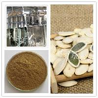 厂家供应 纯天然南瓜籽提取物  现货热销
