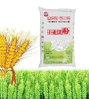 优质硬质小麦淀粉 澄粉 澄面诚招全国代理