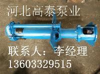 SP液下渣浆泵 SPR衬胶液下渣浆泵