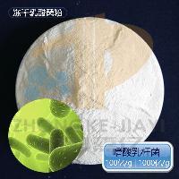 嗜酸乳杆菌 冻干乳酸菌原菌粉